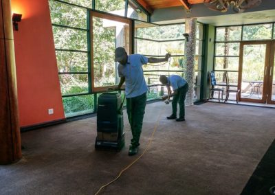 Dry carpet cleaning at Moyo Restaurant