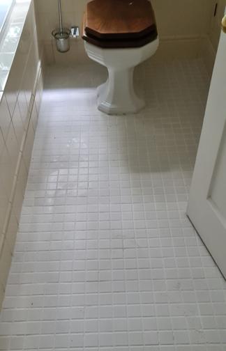 Deep Cleaned toilet floor